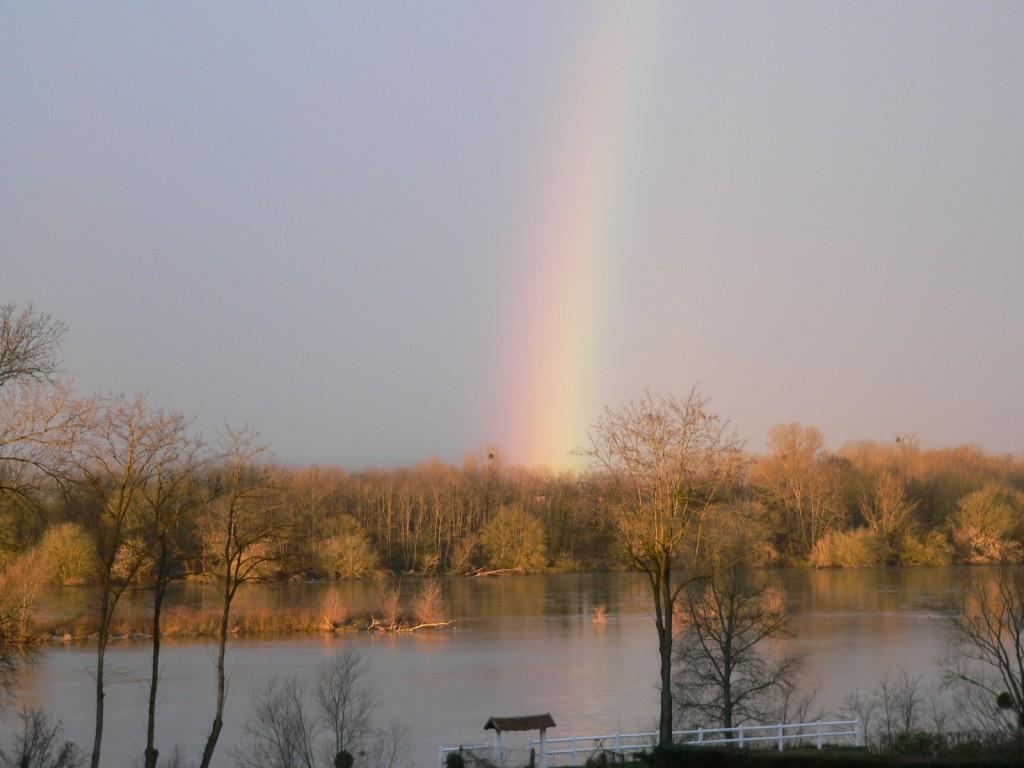 La Loire à Pouilly le 20 fév 2014 prise par Jean-Michel Masson vers 8h.