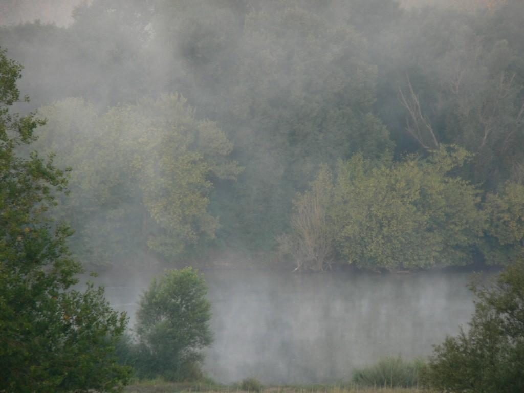Brouillard sur la Loire
