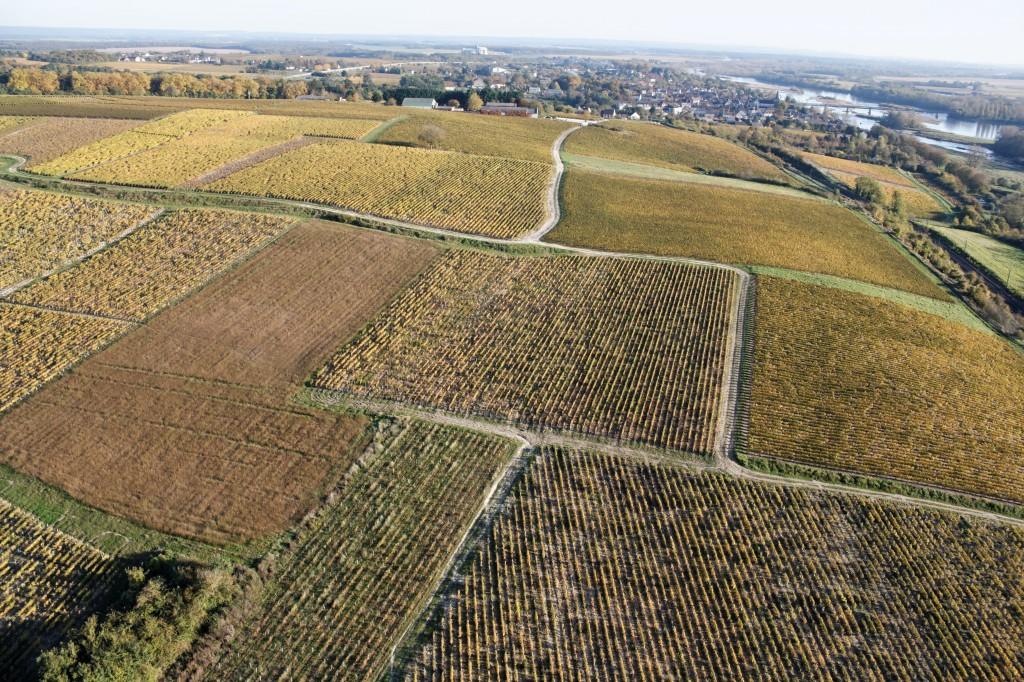 Vignes de Pouilly, Loire, Bernard-Noël CHAGNY